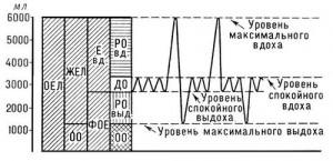 Легочные объемы и спирометрия