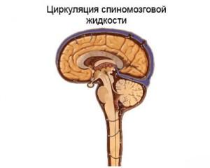 PEEP и внутричерепное давление (ВЧД)