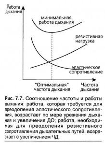 Расчет оптимальных параметров вентиляции и определение границ безопасной ИВЛ