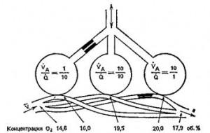 Вентиляционно-перфузионные соотношения