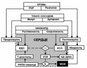 LSF — современный математический метод измерения и мониторинга параметров легочной механики